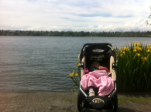 baby in jogging stroller at greenlake