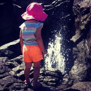 water at woodland park zoo